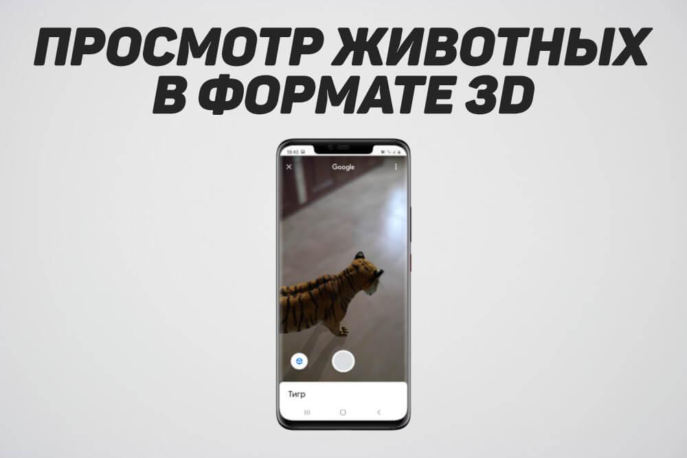 животные гугл в 3д