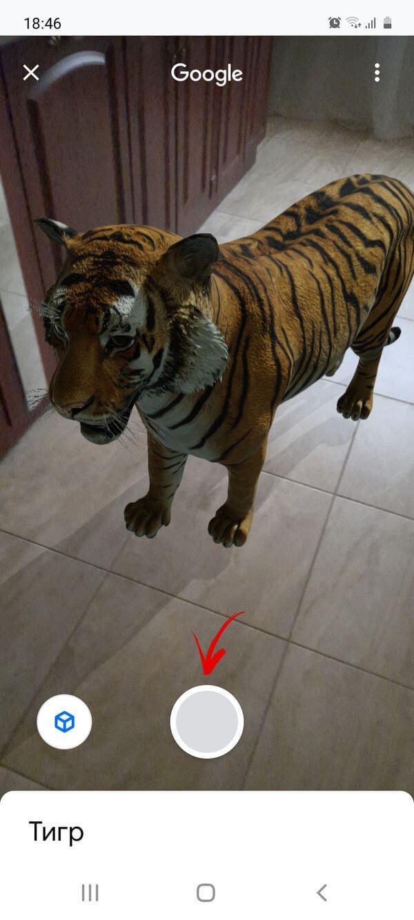 фотографирование виртуального животного