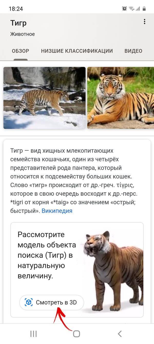 смотреть модель животного в 3d