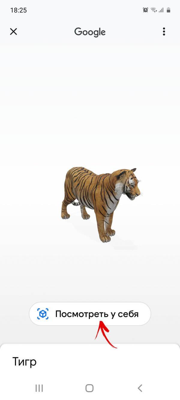 просмотр 3d-модели животного на телефоне
