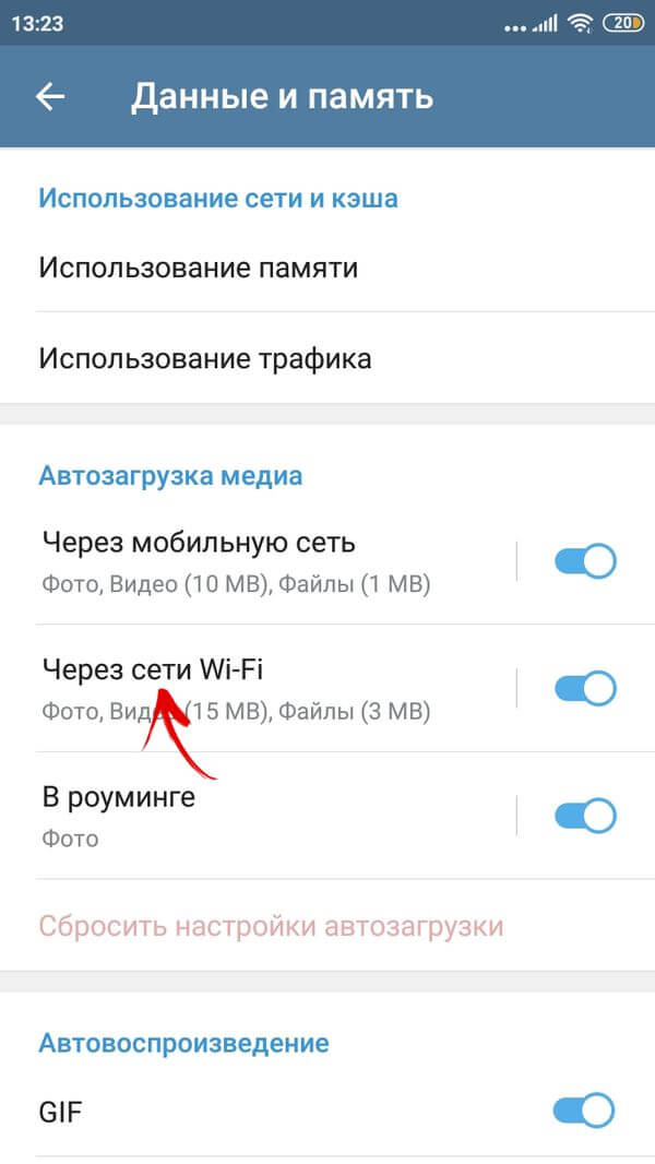 выбор типа интернет-соединения в настройках telegram